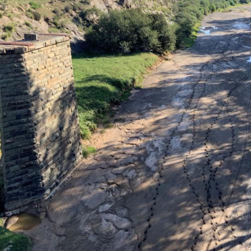 Hierdie muur na links in die Sondagsrivier net buite Jansenville, is om watervlakke mee te meet. Na die droogte is dit moeilik om jou voor te stel hoe hierdie rivier ooit genoeg water in gehad het om daardie hoogtes te bereik!